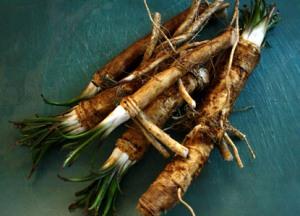 Horseradish (yum)