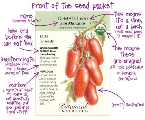 Seed Packet Front
