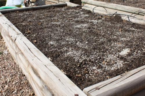 Soil Amendment Step 4