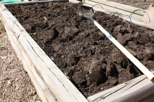 Soil Amendment Step 5