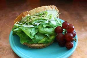 Crunchy Avocado, Spinach & Goat Cheese Sandwich